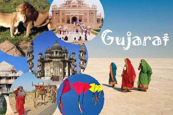 PP/HDPE Woven Bag Manufacturer, supplier in Gujarat